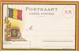 BELGIQUE. MILITARIA. GUERRE 1914-18. RARETÉ. CARTE POSTALE BELGE VIERGE - Marcophilie (Lettres)