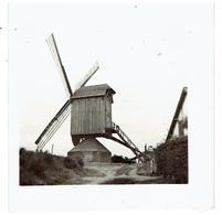LUMMEN - Molen - Kleine Foto 6,5 X6,5 Cm - Foto F. Wessel + Afgeknipte Postkaart Molen Lummen - Lummen