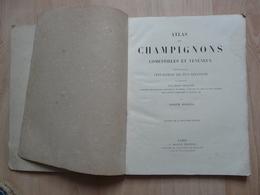 Ancien Atlas Des Champignons Comestibles Et Vénéneux Par J.Roques Vers 1860 - Natur