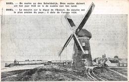 De Molen Op Den Scheldedijk Doel - Beveren-Waas
