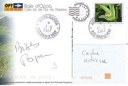 13064  PAP BAIE D'OPOA - île De RAIATEA - AVERA - ISLV - POLYNÉSIE - Lettres & Documents