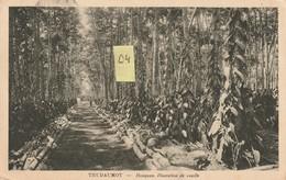"THUDAUMOT "" Indochine "" Honquan. Plantation De Vanille  Animée (1932) - Landwirtschaftl. Anbau"