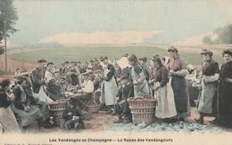 Les Vendanges En Champagne - Le Repas Des Vendangeurs - France