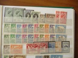 Lotto Aden - Aden (1854-1963)