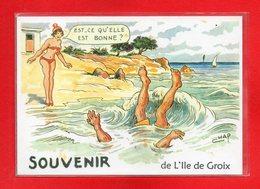 56-CPSM ILE DE GROIX - Groix
