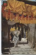 1971 Marrakech - Tintoreros - Dyers - Teinturiers - - Marrakech