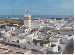 Hammamet - La Vieille Ville Vue Du Fort - Ed Carthage - Tunisie