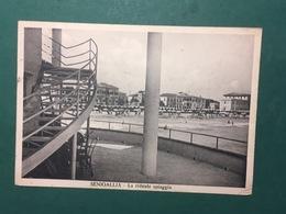 Cartolina Senigallia - La Ridente Spiaggia - 1939 - Treviso