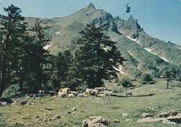LE MONT DORE - Le Mont Dore