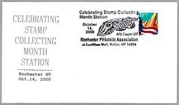 SEPIA - CUTTLE FISH - Oder Sepiida - Molusco Cefalopodo. Victor NY 2000 - Marine Life