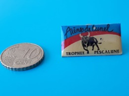 PINS COURSES TAURINES De LUNEL - TROPHEE PESCALUNE - Bullfight - Corrida