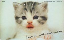Télécarte Japon / 110-011 - ANIMAL - CHAT - CAT * LOVE OF EARTH & NATURE ** - Japan Phonecard -  KATZE - 5003 - Gatos