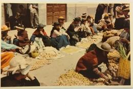 (683) Peru - Huancayo - Sunday Market - Patatoes - Pérou