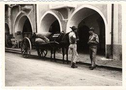 Foto Von Sterzing - Bögen Mit Pferdefuhrwerk Davor Ca 1950 10x7 Cm - Vipiteno