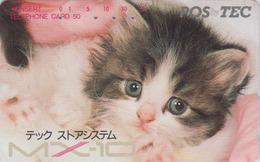 Télécarte Japon / 110-125864 - ANIMAL - CHAT - CAT Japan Phonecard - KATZE - GATTO - GATO - 5011 - Katten