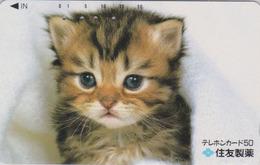 Télécarte Ancienne Japon / 110-011 - ANIMAL - CHAT Roux - CAT Japan Phonecard * Sumitomo * - KATZE * Assu * - 5012 - Chats