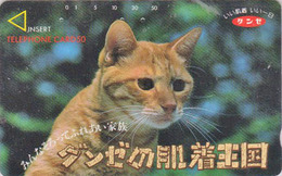 Télécarte Japon / 110-011 - ANIMAL - CHAT Roux  - CAT Japan Phonecard - KATZE  - GATTO - GATO - 5017 - Gatti