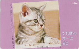 Télécarte Japon / 110-49405 - ANIMAL - CHAT Gris - CAT Japan Phonecard - KATZE  - GATTO - GATO - 5018 - Chats