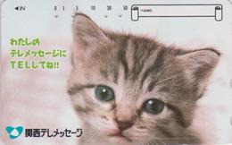 Télécarte Japon / 110-016 - ANIMAL - CHAT Gris ** Telemessage ** - CAT Japan Phonecard - KATZE  - GATTO - GATO - 5020 - Chats