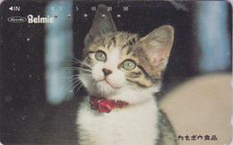 Télécarte Japon / 110-011 - ANIMAL - CHAT ** BELMIE ** - CAT Japan Phonecard - KATZE - GATTO - GATO - 5034 - Chats