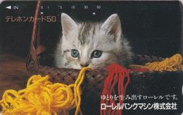 Télécarte Japon / 110-48361 - ANIMAL - CHAT ** BANQUE LAUREL BANK ** - CAT Japan Phonecard - KATZE - GATTO - 5035 - Gatos