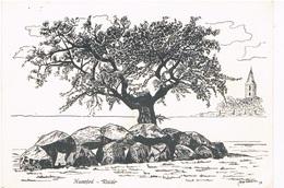 HUN-13   ROLDE, Hunnebed, Menhir, Dolmen - Dolmen & Menhirs