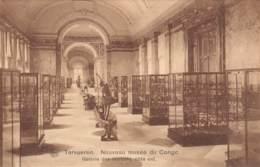TERVUEREN - Nouveau Musée Du Congo - Galerie Des Marbres, Côté Est - Tervuren