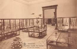 TERVUEREN - Nouveau Musée Du Congo - La Salle Des Produits - Tervuren