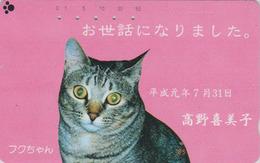 Rare Télécarte Japon / 110-015 - ANIMAL - CHAT - CAT Japan Phonecard - KATZE - GATTO - GATO - 5031 - Gatos