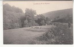 Belgique - LIE - Stoumont - Vallée Du Ri Du Pouhon - Stoumont