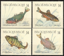Belgien MiNr. 2435/38 ** Fische - 1990-1993 Olyff