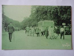 ILE DE NOIRMOUTIER AU BOIS DE LA CHAIZE RAMUNTCHO N°17755 - Ile De Noirmoutier