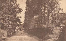 Lustin Sur Meuse-  Route Du Fond Delvaux - état Voir Scan. - Profondeville