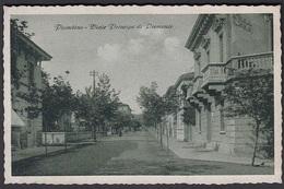 Italia  -  PIOMBINO, Viale Principe Di Piemonte - Livorno
