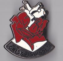 PIN'S  THEME  JUDO  CLUB DE GRISY SUISNES - Judo