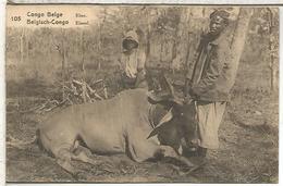 CONGO BELGA ENTERO POSTAL ELAN FAUNA MAMIFERO ANTILOPE - Animalez De Caza