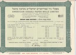American Israeli Paper Mills Limited Stock Cetificate , 1959 - Israel