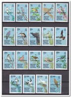 Britse Maagdeneilanden 1985, Postfris MNH, Birds, Specimen - Britse Maagdeneilanden