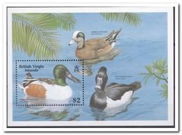 Britse Maagdeneilanden 1988, Postfris MNH, Birds, Ducks - Britse Maagdeneilanden