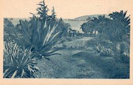83 TAMARIS SUR MER VUE D' ENSEMBLE - La Seyne-sur-Mer