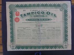 LONDRES 1911 - TAMPICO OIL  - TITRE DE 50 ACTIONS DE 5 £ - GRAND FORMAT - PEU COURANT - Actions & Titres