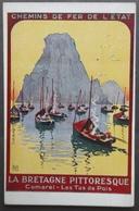 CPA 29 - CHEMIN DE FER DE L'ETAT - CAMARET - LES TAS DE POIS - (photo De L'affiche, Voir Verso) - Camaret-sur-Mer