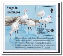 Britse Maagdeneilanden 1995, Postfris MNH, Birds - British Virgin Islands