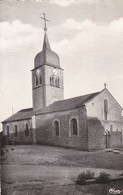 ISCHES - VOSGES -  (88)  - CPSM DENTELÉE. - Autres Communes