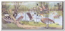 Britse Maagdeneilanden 2002, Postfris MNH, Birds, Ducks - Britse Maagdeneilanden