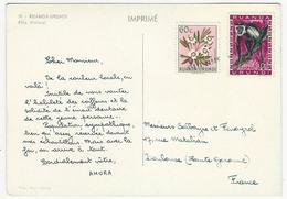 Carte AMORA N° IIII - RUANDA-URUNDI - Fille Watutsi - Ruanda-Urundi