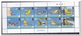 Britse Maagdeneilanden 2005, Postfris MNH, Birds - British Virgin Islands