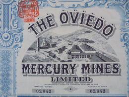 LONDRES 1907 - THE OVIEDO MERCURY MINES - TITRE DE 1 ACTION DE 2  £ - BELLE DECO - Aandelen