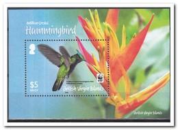 Britse Maagdeneilanden 2014, Postfris MNH, Birds - Britse Maagdeneilanden