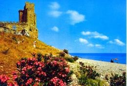 Roseto - Il Castello - Formato Grande Viaggiata – E 13 - Italy